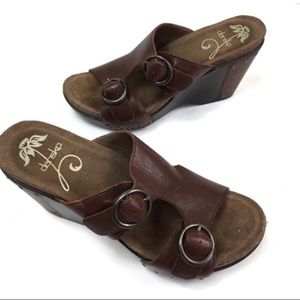 Dansko Brown Leather Fern Clog Wedge Sandal
